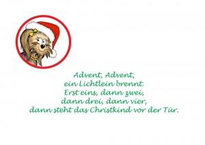3x4 Pfötchen in der Adventszeit Advent