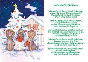 Schneeflöckchen_3x4 Pfoetchen